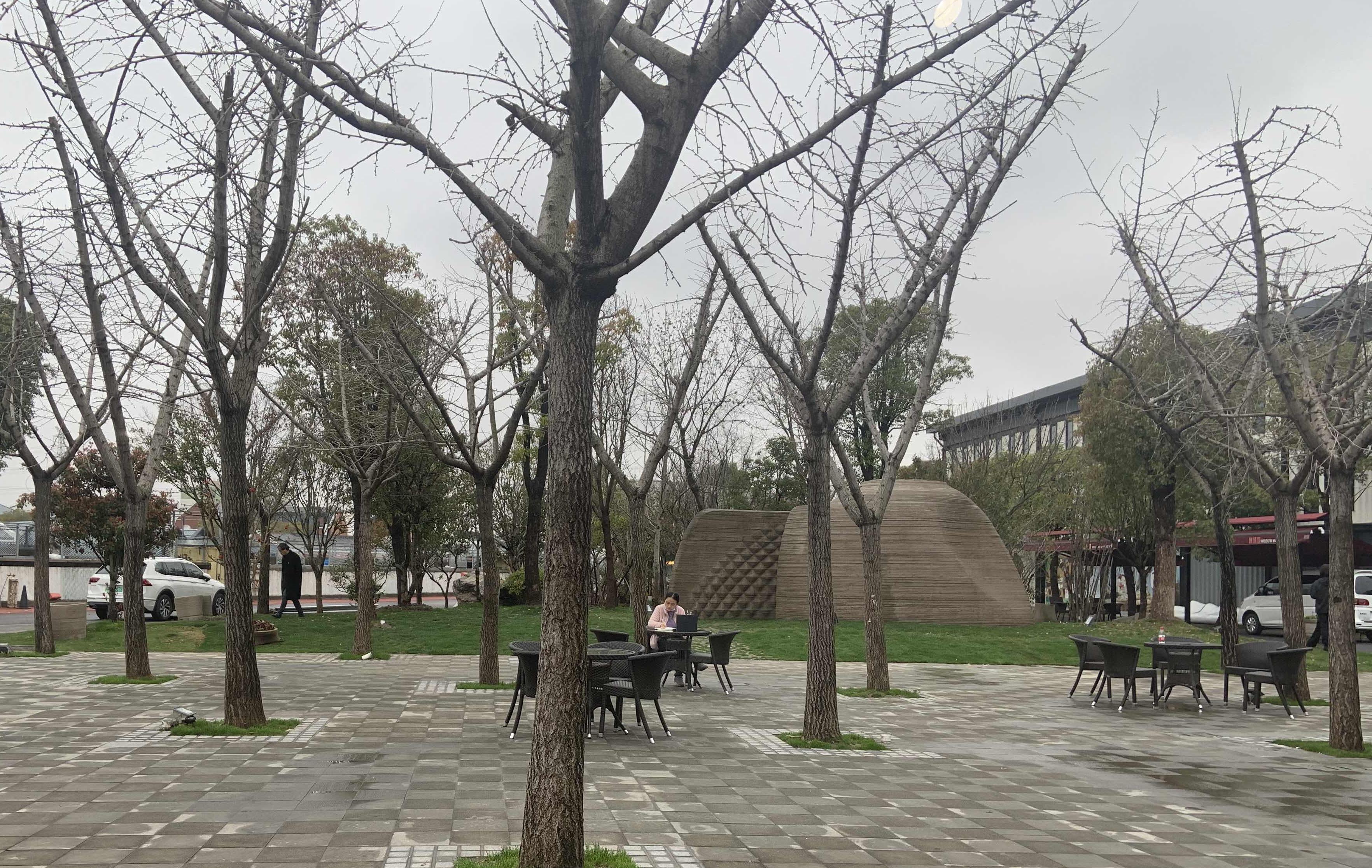 书屋坐落在小树林里 本文图片均为澎湃记者 邓玲玮 图