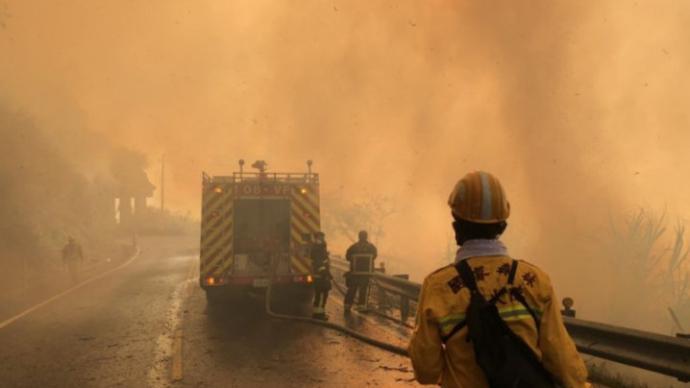 久旱干燥,台湾阿里山发生森火已延烧逾20小时