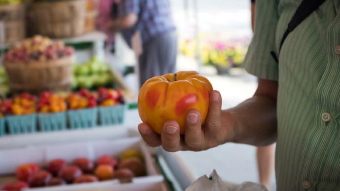 食物規劃|紐約食物向前⑦:用系統和知識支持食物政策