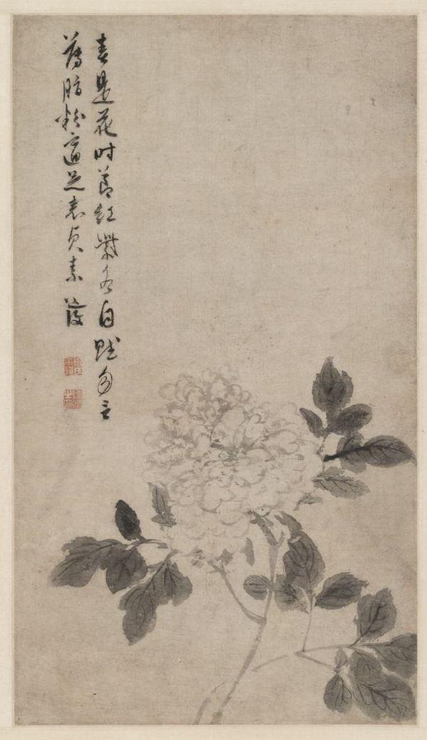 明 陈淳 《牡丹花卉图》轴 故宫博物院藏