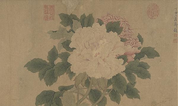 宋 钱选 《画牡丹》卷(局部) 台北故宫博物院藏