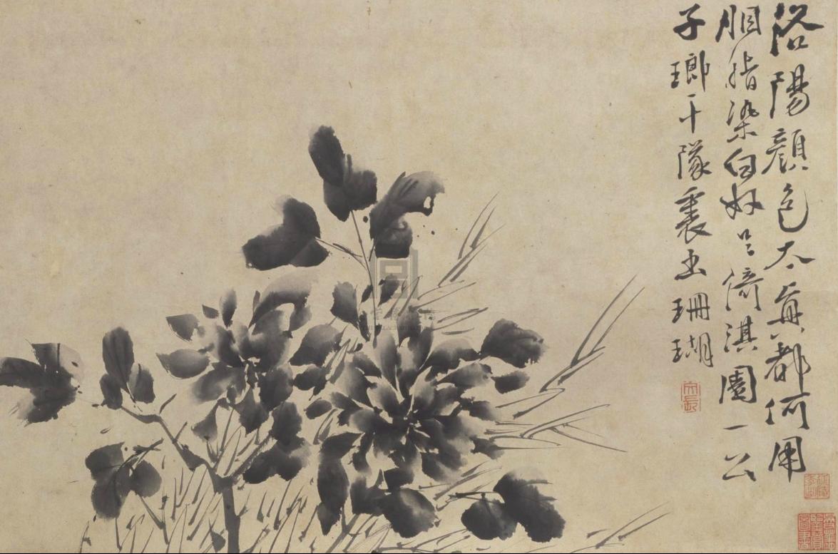 明 徐渭 《墨画九段图》卷之牡丹 故宫博物院藏