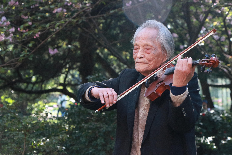 在武汉的樱花树下,王欣再次拉起《沉思曲》