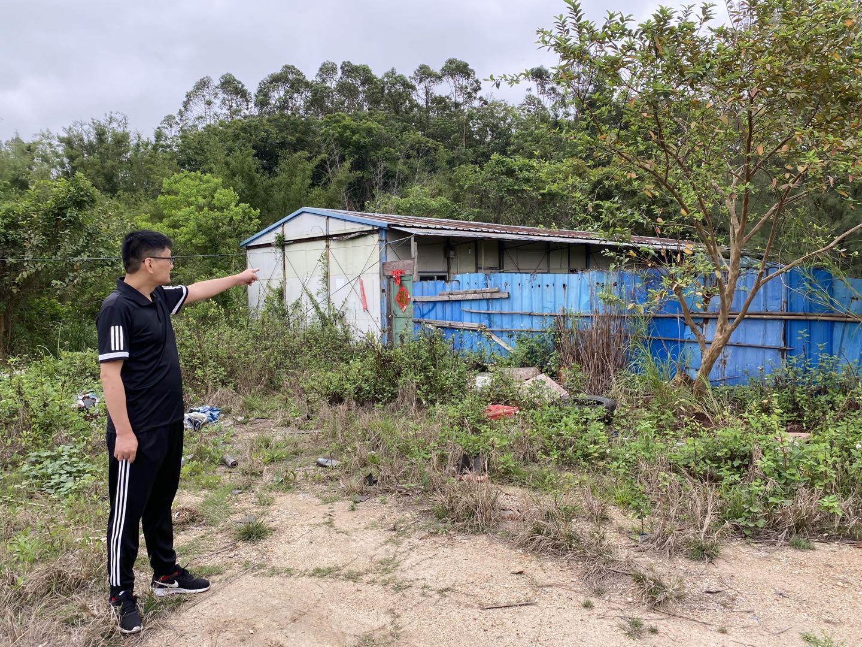 停工12年,红树林公司在钦州港项目地块的工作板房已经周边杂草丛生。本文图片均由受访者提供