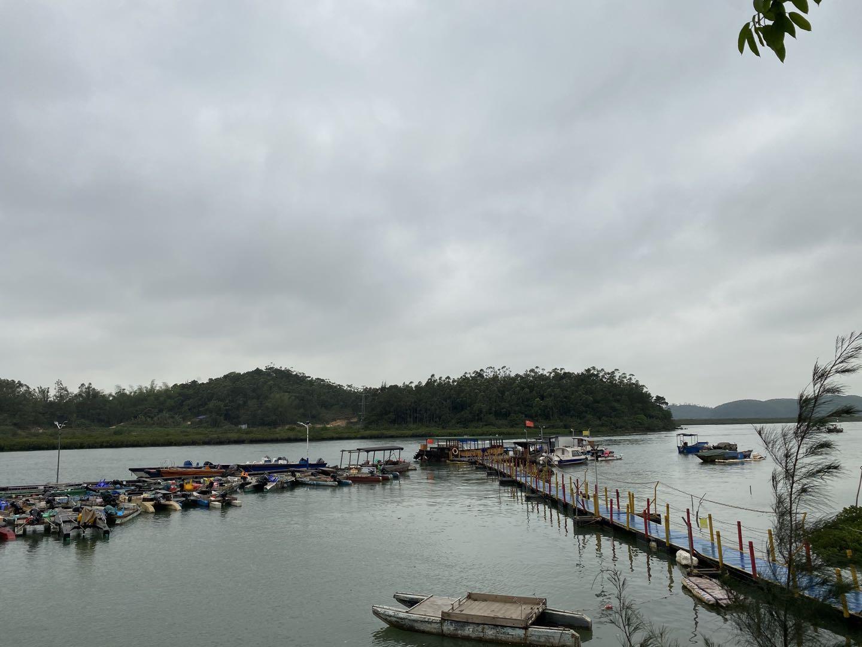 涉案项目地块位于钦州港岸边。