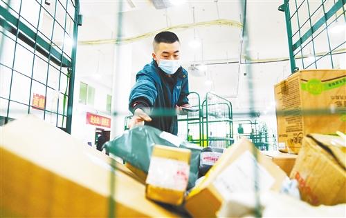 在重庆市北碚邮政快递收运点,一名快递小哥在分拣快递。秦廷富摄 中经视觉