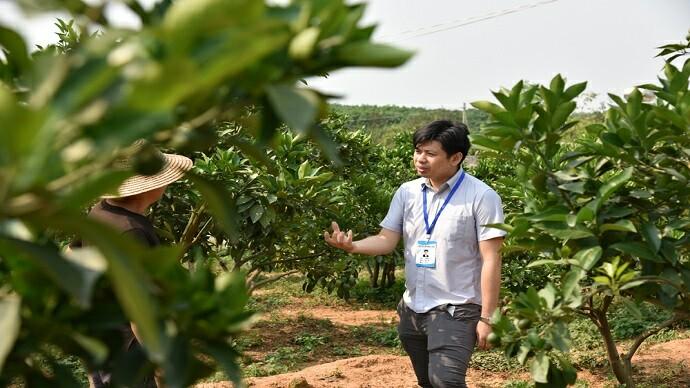 乡村振兴工作队队员羊锦佐在绿橙种植园与农户交流。许尔生摄影