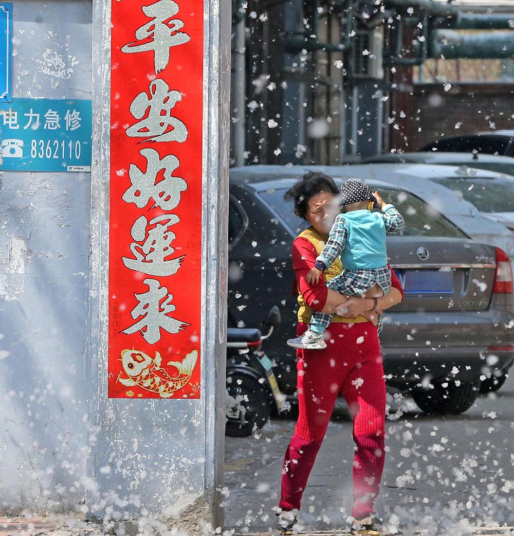 """2021年4月6日,山东省潍坊市,一位抱着小孩的市民在漫天飞舞的杨絮中出行。连日来,随着气温的不断攀升,潍坊市区不少栽种杨树的地方开始飘""""雪"""",飞舞的杨絮给人们出行带来不便。张驰/视觉中国 图"""