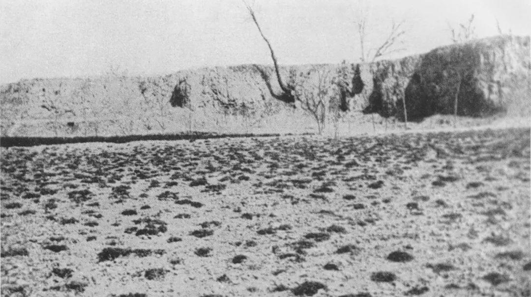 西阴村灰土岭发掘前的情形图