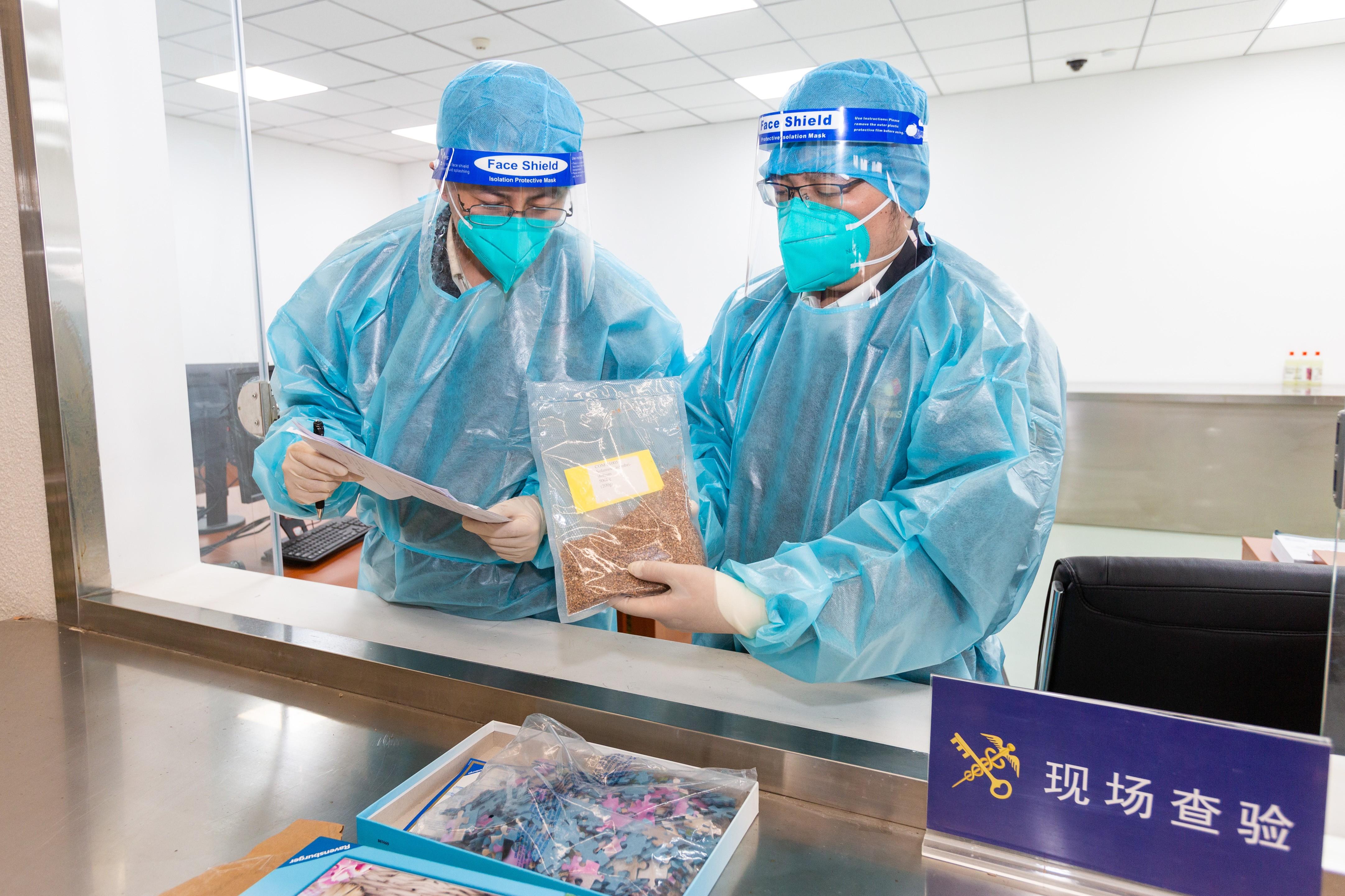 """星耀娱乐:进口""""拼图""""过机图像异常,北京海关查获0.2千克夹藏种子"""