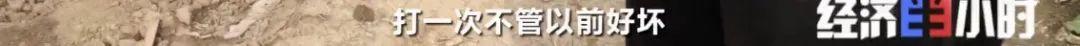 河南省周口市鹿邑县任集乡村民