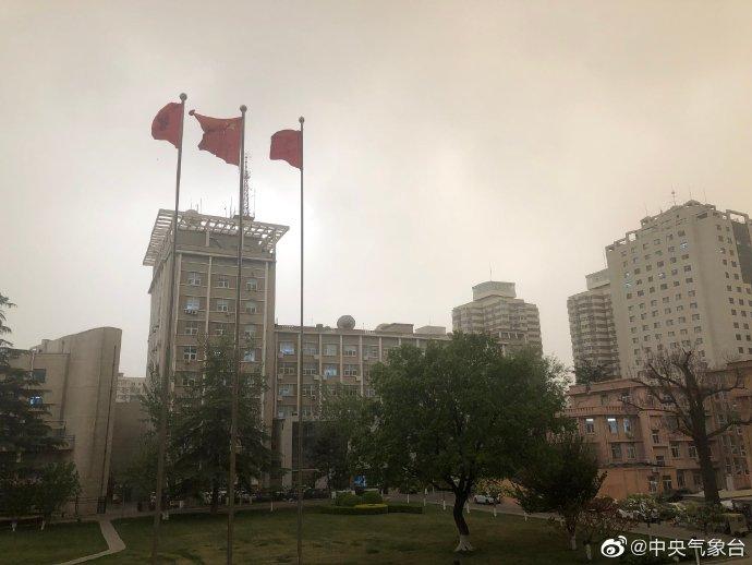拍摄于4月15日下午,坐标北京市海淀区