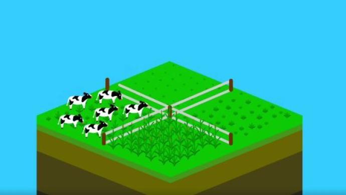 舌尖下的中国|再生农业:恢复土壤,助力碳中和