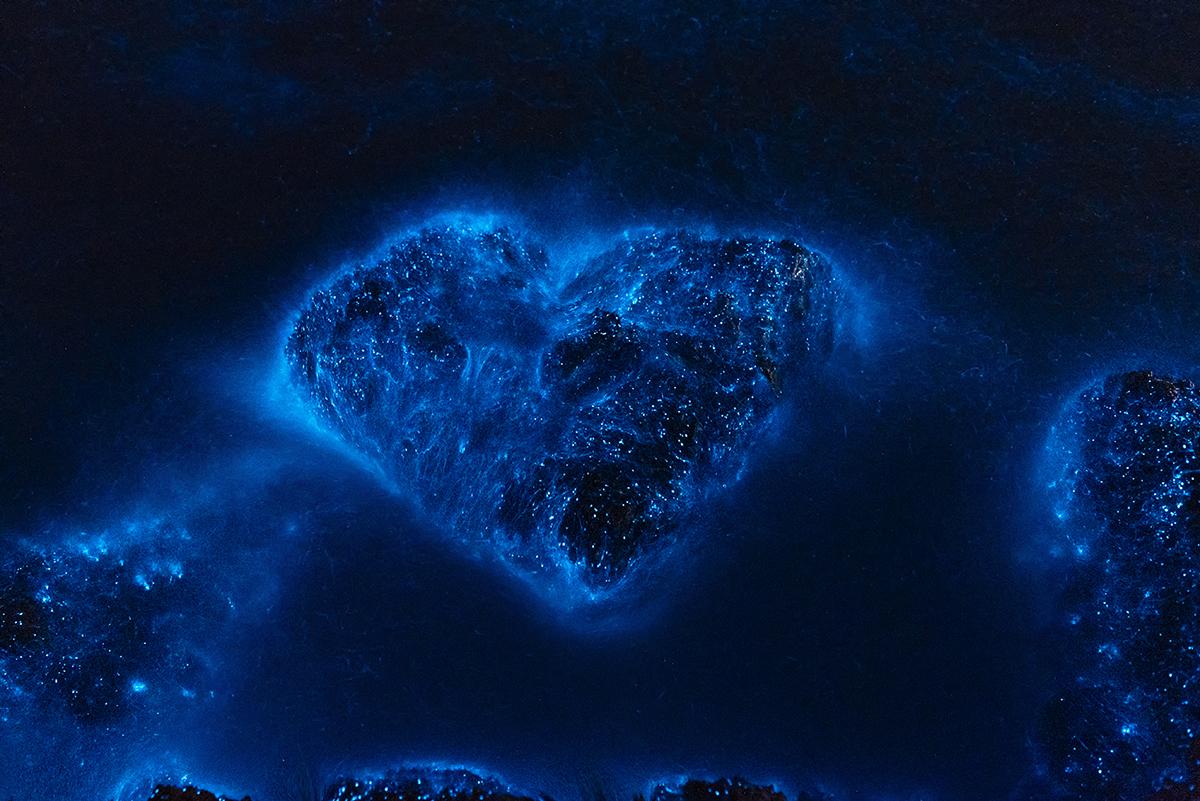 2021年2月7日,中国广州珠海,荧光海现象。