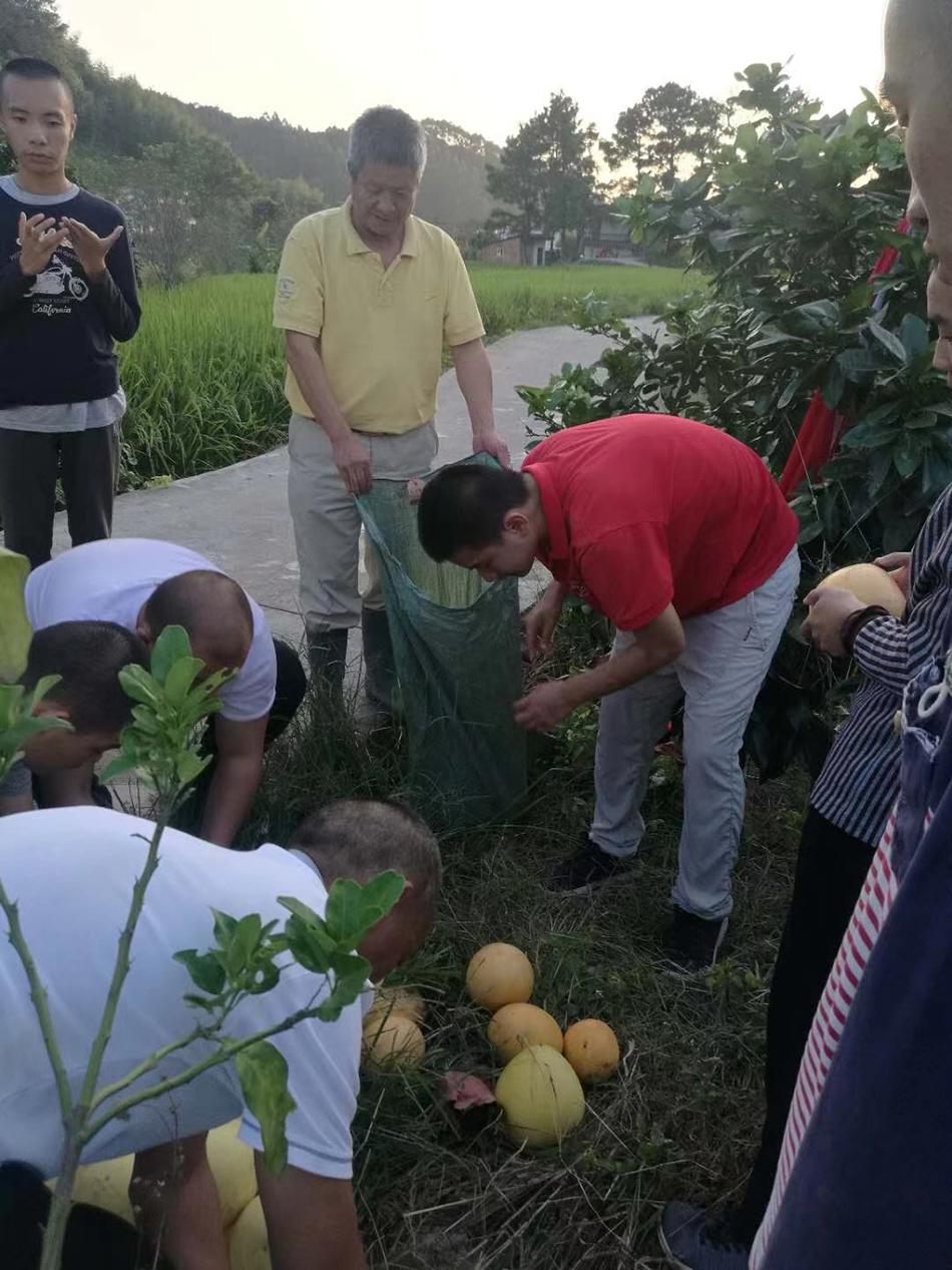 在村里,自闭症孩子经常能获得参与简单农业劳作的机会。