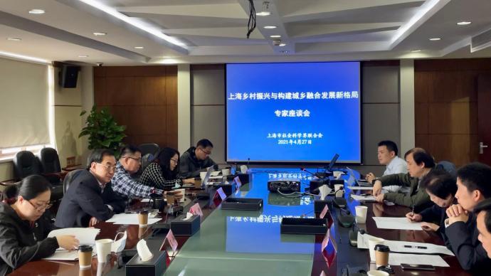 上海社聯圓桌|超大城市搞鄉村振興的難題與出路