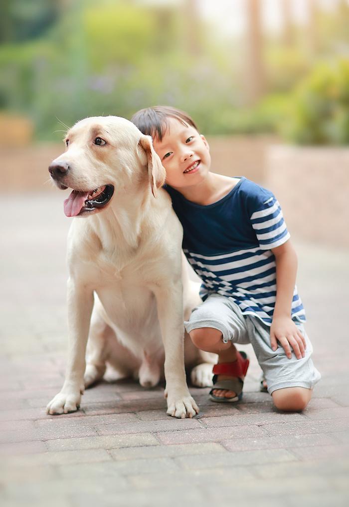 孩子的善意,需要周围大人的悉心浇灌。