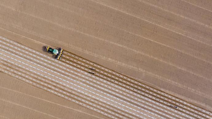 2個90后管3000畝地?新疆棉花種植用上無人機、AI