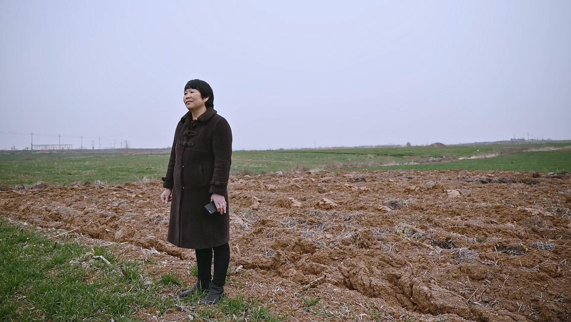 韩仕梅站在田埂上。 澎湃新闻记者 柳婧文 曾茵子 图