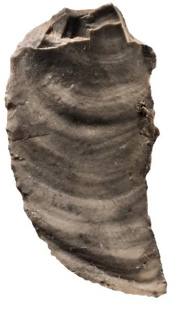 石器剥片修理技术