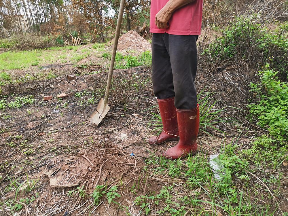 村民下地干活,雨鞋是必要装备
