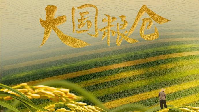 """聚焦""""中國飯碗"""",《國家記憶》推出紀錄片《大國糧倉》"""