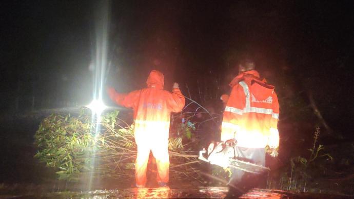 狂風暴雨致重慶百余畝森林被毀,部分地區道路通行嚴重受阻