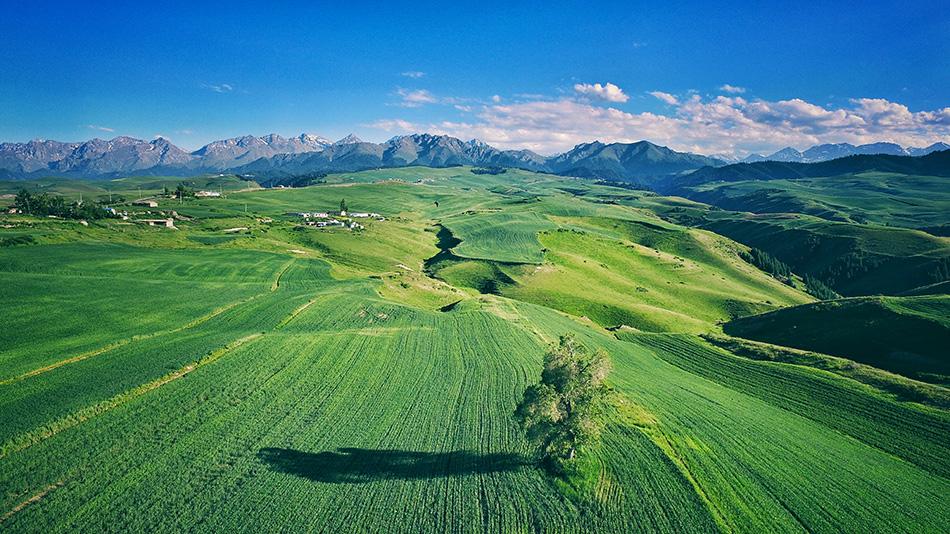 新疆奇台县江布拉克,最美牧村。