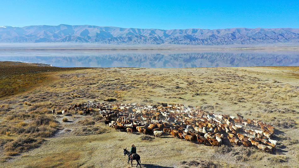新疆哈密,航拍伊吾县盐池镇幻彩湖畔秋日景色。