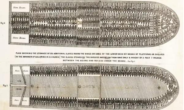"""英国运奴船平面图,显示奴隶们是如何被""""储存""""的。"""