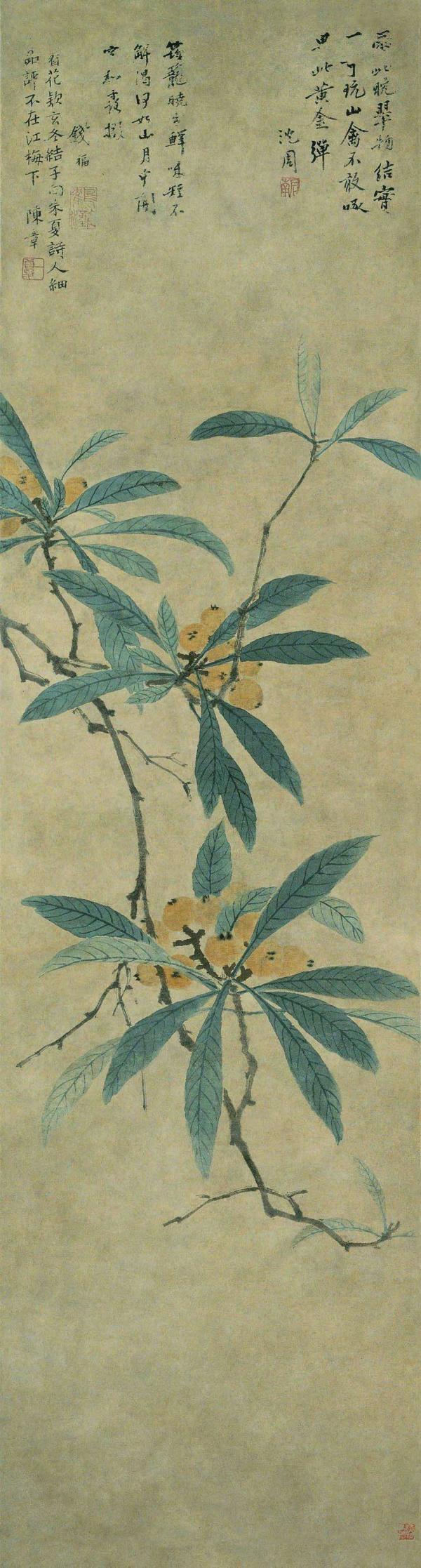 明 沈周《枇杷图轴》 故宫博物院藏