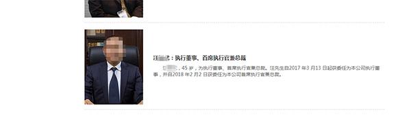 汪某武简介希望教育集团公司官网截图
