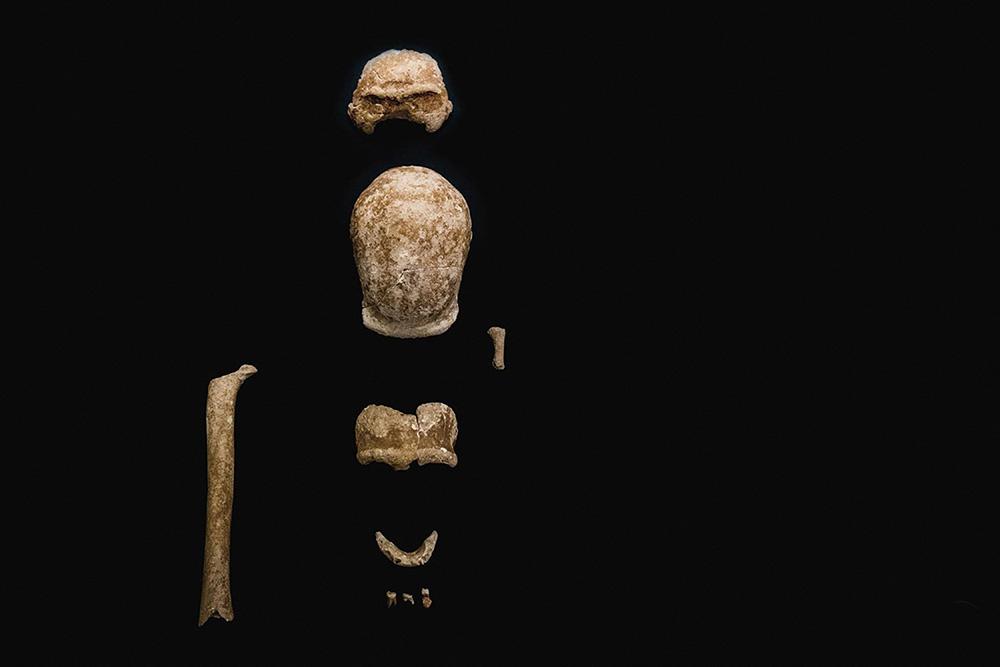 当地时间2021年5月8日,意大利文化部当日公布意大利罗马南部San Felice Circeo的Guattari山洞出土9名尼安德特人化石照片。
