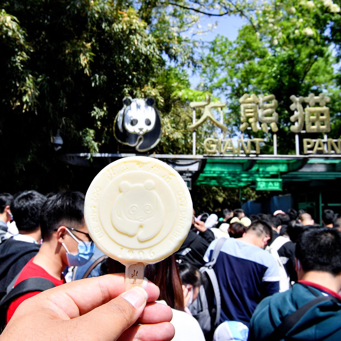 北京动物园●熊猫雪糕