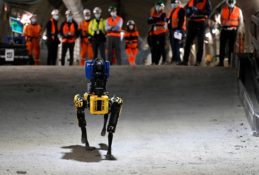 当地时间2021年5月11日,法国东部南锡,研究人员在地下实验室控制一只机器狗,让机器狗在四处走动。该项目将致力于使用该机器狗进行工业应用的开发。