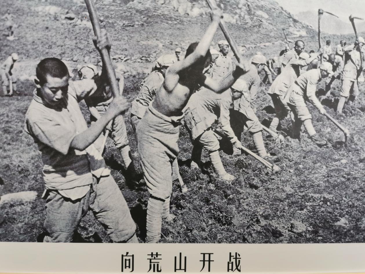 三五九旅战士们向荒山开战。 澎湃新闻记者 张家然 翻拍
