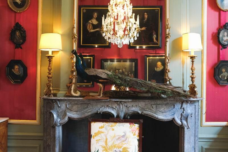 Red Drawing Room以高调的红色为主调,壁炉上的孔雀标本的蓝绿色调与房间的红色调形成强烈的对比,是点睛之笔。红绿的色调搭配衬托了房间的气氛,隆重中带着克制。