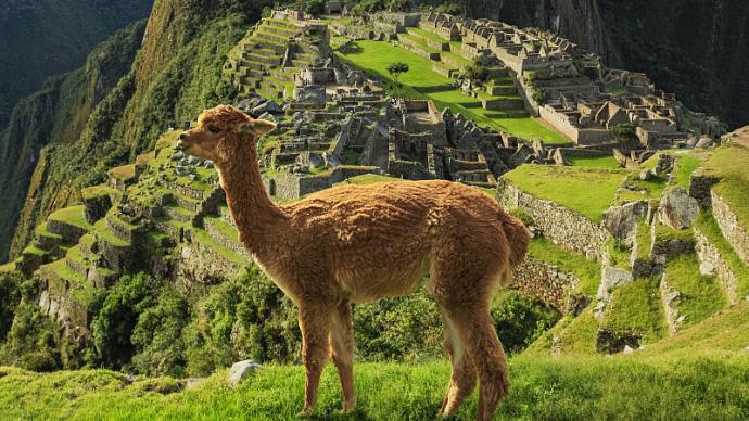 罗新读《到马丘比丘右转》|一部有关秘鲁的旅行文学名著