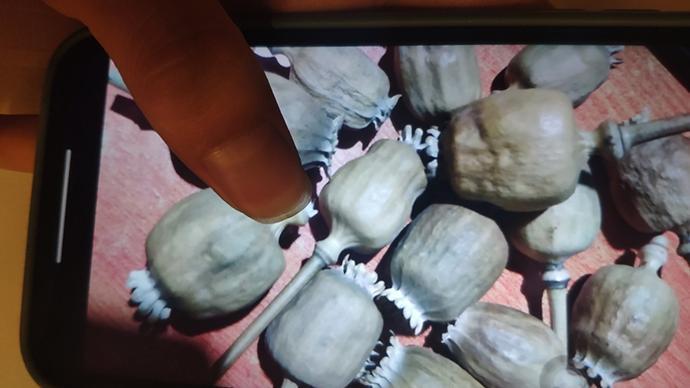 暗访|多个中药材集散地存罂粟壳地下交易,多流向小吃市场