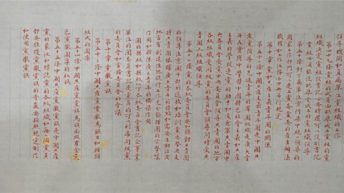 上海杨浦统战人士创作《党章》长卷礼赞建党百年