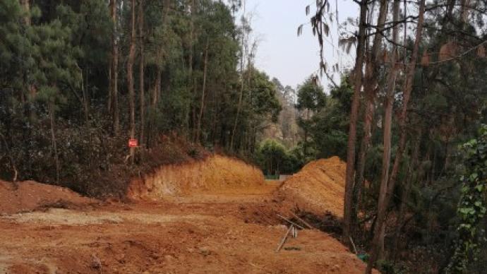 昆明世博园大片森林被砍伐,盘龙有关部门工作不严不实被追责