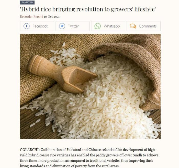 巴基斯坦《商业纪事报》报道截图