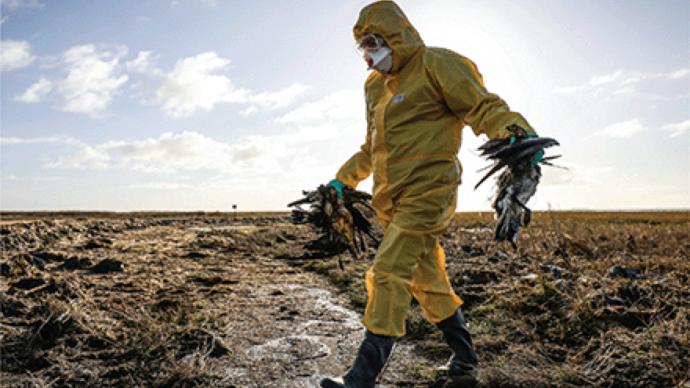 高福等人发文:须重视新发H5N8禽流感病毒,可造成人感染