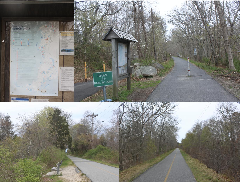 在波士顿,郊野有几十公里的自行车道,可一路穿行不同的生态系统。陈雪初 图