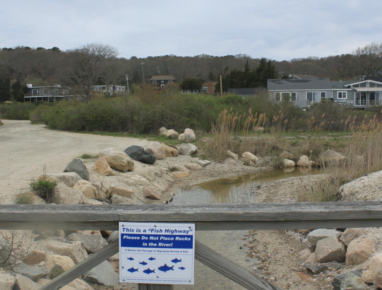 波士顿郊野,路边还有渔道的提示。自然保护的理念,由此可以直接深入人心。陈雪初 图
