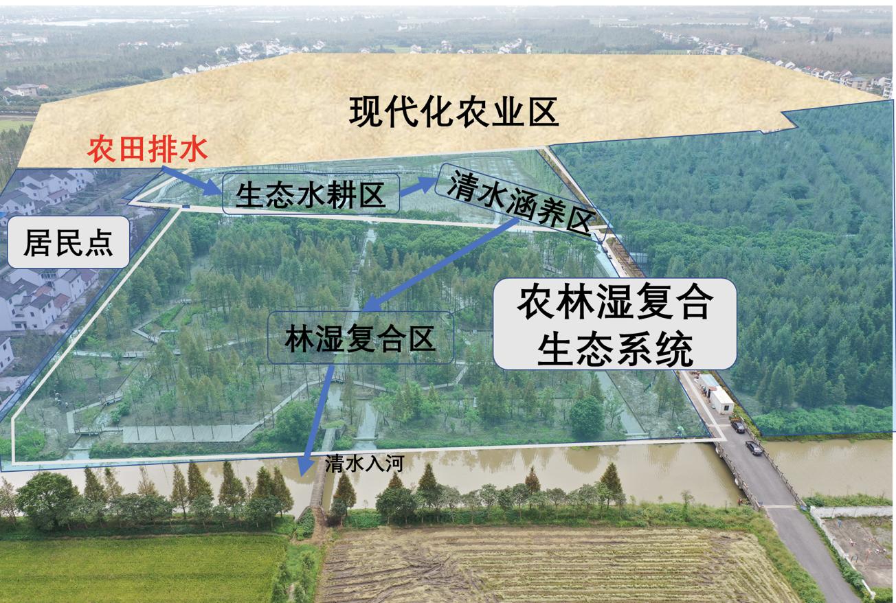 廊下镇友好村结合土地整治的生态修复项目。陈雪初 图