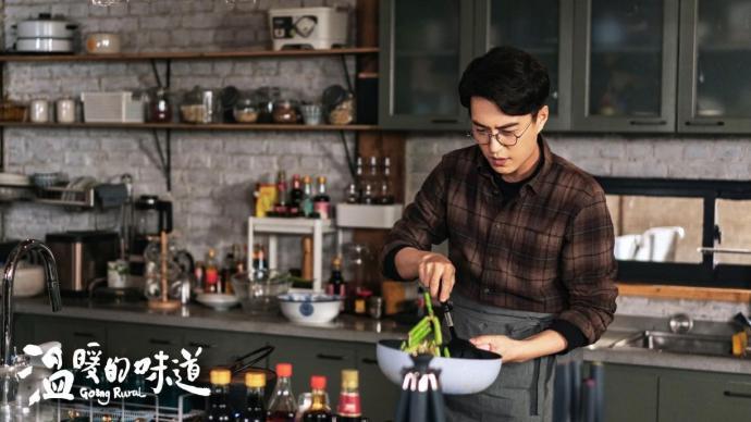 《温暖的味道》:当靳东成了村干部
