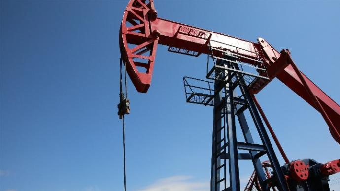 原油期权和棕榈油期权将上市:首批面向境外投资者期权品种