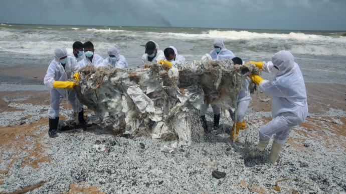 早安·世界 斯里兰卡官员称外国货船起火将引发环境灾难