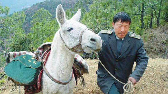 """中国邮政""""马班邮路""""的忠诚信使王顺友逝世,享年56岁"""